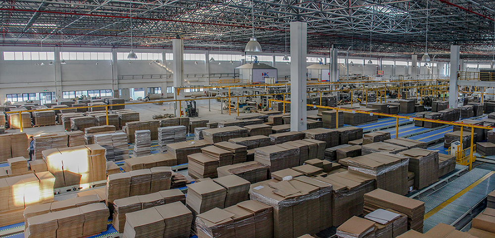 Corrugated Board in-house logistic line